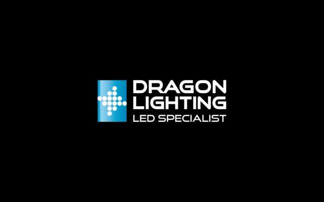 Dragon Lighting Led Specialistprojektowanie logo firmowych ksiegi znaku Agencja brandingowa Moweli Creative Dąbrowa Górnicza Kraków Warszawa
