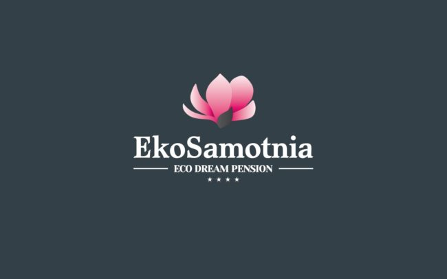 Ekosamotnia logo firmowe projektowanie logo firmy znaków firmowych księgi znaku rewitalizacje rebranding logo Agencja brandingowa Moweli Creative